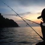 4 Jenis Umpan Mancing Ikan lele Malam Hari 2018