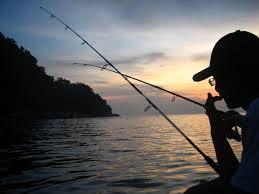 4 Jenis Umpan Mancing Ikan lele Malam Hari
