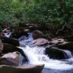 Tempat Lokasi Mancing Ikan Sungai 2018 Banyak Ikan
