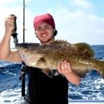 Umpan Galak Mancing Ikan Kerapu Besar