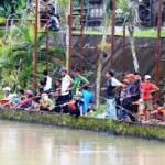 Resep Umpan Mancing Ikan Mas Galatama 2018 Rahasia Pemancing Tua