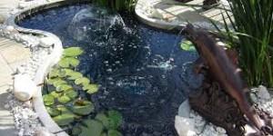 kolam mini unik
