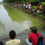 Resep Umpan Mancing Ikan Mas Harian Sungai,Rawa Kolam
