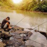 Umpan Mancing Untuk Ikan Baung 2018 Siang Malam Hari