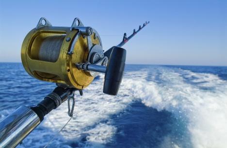 Umpan Mancing Laut Dalam Rahasia Kita Bongkar