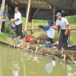 Umpan Mancing Ikan Mas Bahan Dasar Pelet Jitu