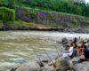 Umpan Mancing di Sungai Selain Cacing Terbukti Joss