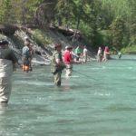 Umpan Mancing di Sungai Paling Ampuh 2018 (Share Pengalaman)