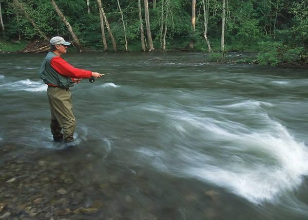 Umpan Pancing di Sungai Deras Galak Dan Bringas