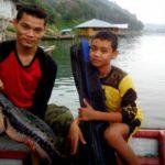 Umpan Mancing di Sungai Kampar 2018 (Resep Racikan Galak)