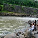Umpan Buatan Untuk Mancing Di Sungai 2018 (Terbukti Galak)
