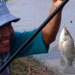 Teknik Mancing Nila Babon 2018 (Siap Bawa Ikan Karungan)