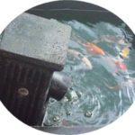 Aerator Kolam Ikan Koi Berbagai Tipe Bentuk Dan Ukuran