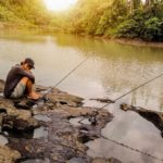 Umpan Mancing Untuk Ikan Baung Siang Malam Hari
