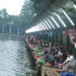 Umpan Mancing Yang Cocok Untuk Ikan Mas Lomba 2018 Jos Gandos