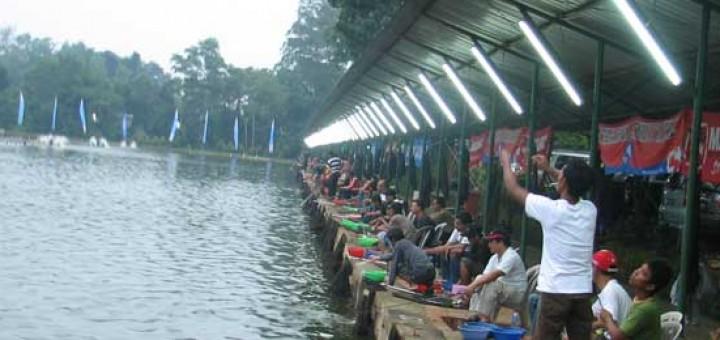 Umpan Mancing Yang Cocok Untuk Ikan Mas Lomba Jos Gandos