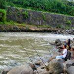 Umpan Mancing di Sungai 2018 Selain Cacing Terbukti Joss
