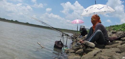 Cara Membuat Umpan Mancing di Sungai Sederhana Terbukti Galak
