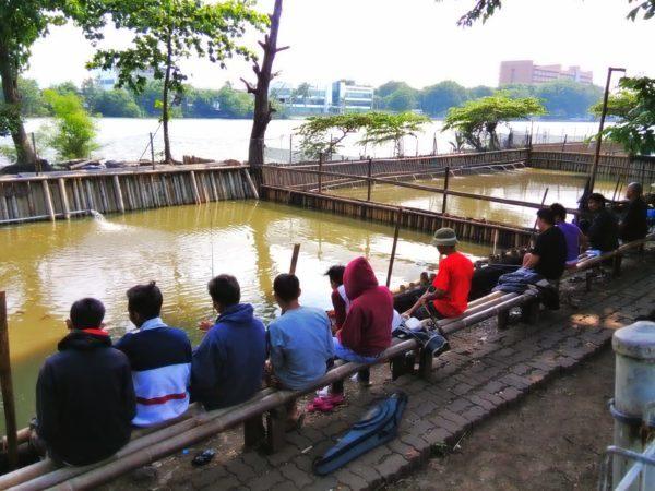 Umpan Mancing Ikan Lele di Pemancingan (Rahasia Pemancing Tua)