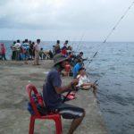 Umpan Apa untuk Mancing di Laut 2018 (Alami Dan Resep)