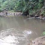 4 Daftar Reel yang Bagus untuk Casting di Sungai Laut(Pengalaman Kami)