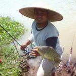 Umpan Jitu Mancing Ikan Nila Liar Terbukti Galak (Rahasia Sesepuh Tua)