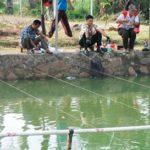 Racikan Ampuh Umpan Ikan Mas Air Keruh Malam Hari 2018