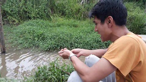 Cara Ikan Mas Memakan Umpan Buatan Maupun Alami PENGALAMAN