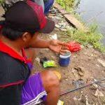 Strategi Mancing Ikan Mas Agar Dapat Banyak Dan Melimpah