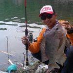 Membaca Posisi Ikan Mas Di Malam Hari Di Kolam Untuk Kita Pancing