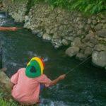 Cara Membuat Umpan Ikan Wader Di Kali Paling Mantap