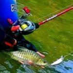 Resep Racikan Umpan Ikan Tawes Dari Tempe Paling Galak