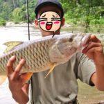 RAHASIA 3 Jenis Umpan Mancing Ikan Palung Siang Malam