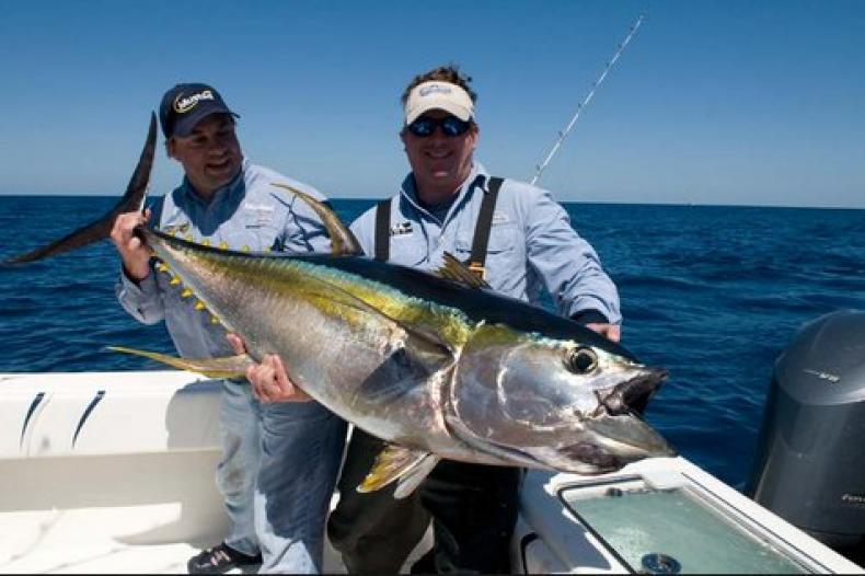 Cara Sederhana Mudah Membuat Umpan Ikan TunaDari Bahan Alami