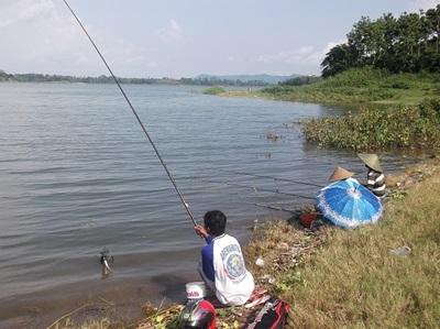 Umpan Galak Mancing Ikan Karper Di Waduk