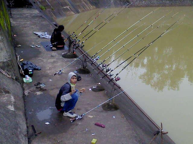 Umpan Jitu Ikan Karper Semua Lokasi