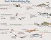 Rangkaian Pancing Ikan Gurame Di Semua Lokasi