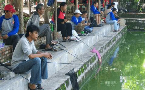 Makanan Favorit Ikan Lele Galatama Mancingikan Net 2020 Mancingikan Net 2020